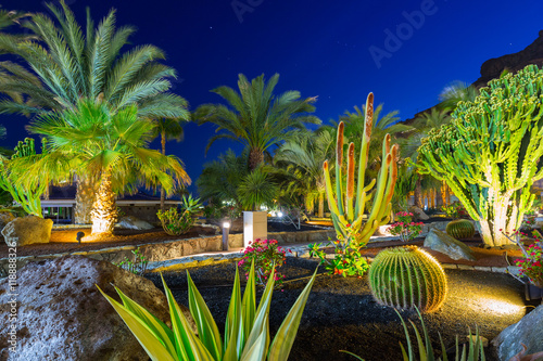 Tropical flora of Gran Canaria island at night, Spain