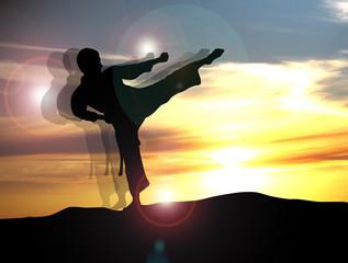 Panel Szklany Sztuki walki Karate - 84