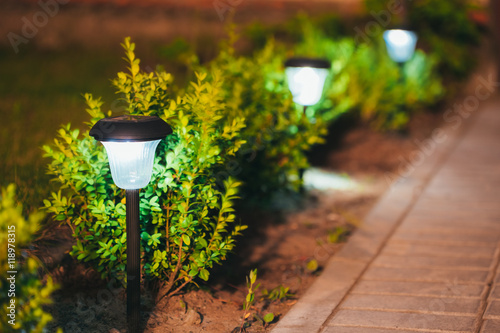Photo sur Toile Saumon Small Solar Garden Light, Lantern In Flower Bed. Garden Design.