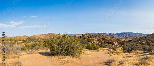 Fotografia, Obraz  Mojave Desert Panorama