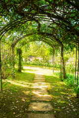 FototapetaArch green soft natural path walkway