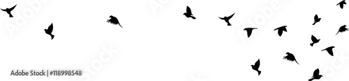 Leinwand Poster Bird flying silhouette vector on a white background