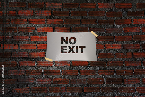 Fotografie, Obraz  No Exit Word on Paper at Grunge Red Brick Wall Texture Background