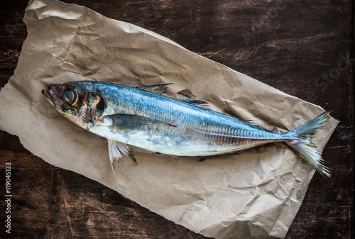 Valokuva  A fresh horse mackerel on a rustic paper.