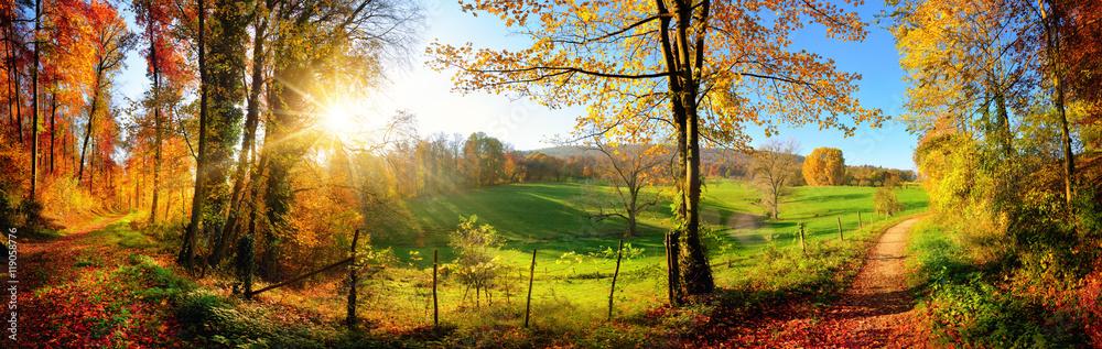 Fototapeta Zauberhafte Landschaft im Herbst: sonniges Panorama von ländlicher Idylle