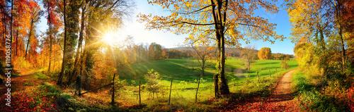 Tuinposter Landschap Zauberhafte Landschaft im Herbst: sonniges Panorama von ländlicher Idylle
