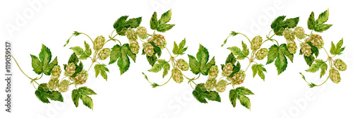 Fotomural pattern branch of hops watercolor on the background