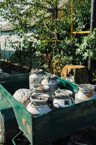 Fototapety, obrazy: Iron cans with fresh milk in green trailer in sunlight.