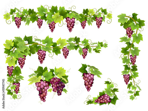 Set of bunches of red grapes Tableau sur Toile