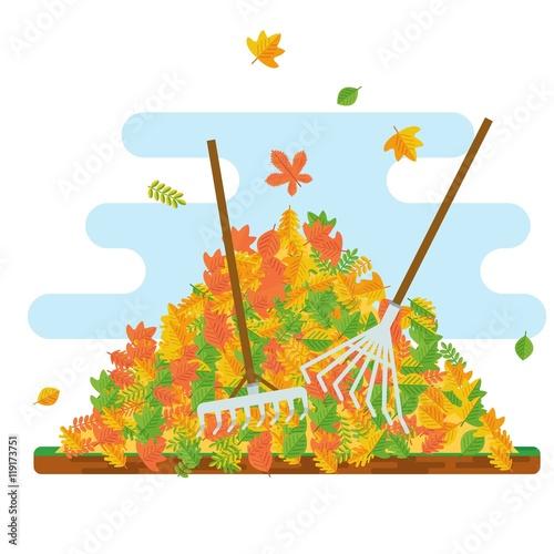 Fotografía rake collecting fallen leaves