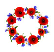Leinwanddruck Bild - Wreath of red poppies, cornflowers and chamomile on white background with space for text. Flat lay