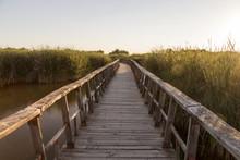 Bridge To Visit The Tablas De Daimiel National Park In Spain