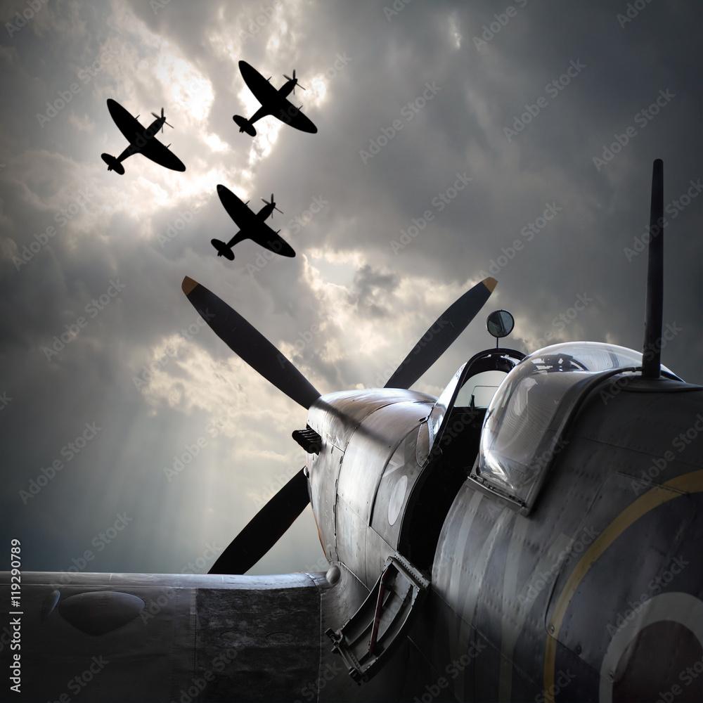 Fototapeta The Fighter planes