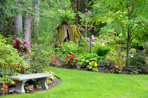 Poster Jardin Lush green botanical garden with bench