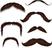Brown Different Style Isolated Mustaches Set