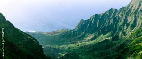 Fotografie, Obraz  Panorama of the jagged cliffs in Kalalau Valley on the Na Pali Coast, Kauai, Haw