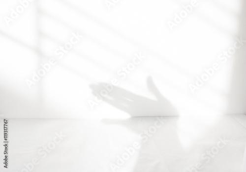 fototapeta na lodówkę Hands shadow