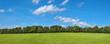 canvas print picture - Landschaft mit Wiese, Büschen, Bäumen und leichter Bewölkung am Himmel