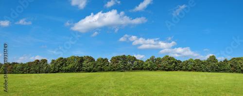 Fotografia, Obraz  Landschaft mit Wiese, Büschen, Bäumen und leichter Bewölkung am Himmel