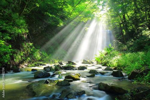 秋田県 亀田不動滝の光芒 © yspbqh14