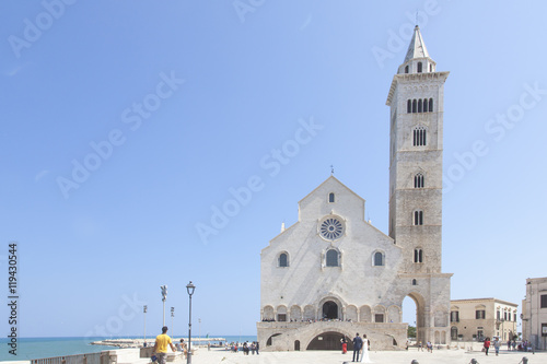 Vászonkép Cattedrale sul mare di Trani