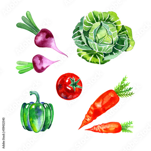 Photo  watercolor vegetables set, food illustration on white background
