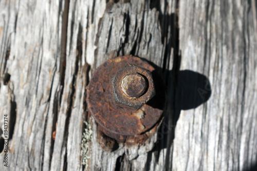 Fotografie, Obraz  En rostig skruv och mutter i en gammal planka