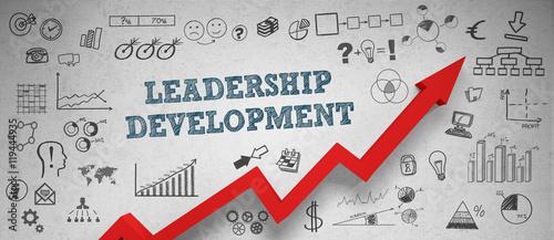 Fotografie, Obraz  Leadership Development