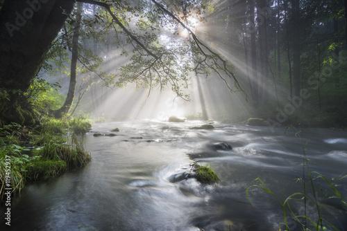 Foto Nebel und durchbrechende Sonne am Fluß