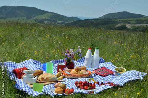 Keuken foto achterwand Picknick Picnic with a delicious spread of fresh fruit, pastry, milk, cheese on a blue and white tablecloth on meadow