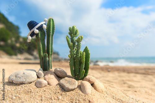 Keuken foto achterwand Cactus Cactus plants with sombrero at the beach