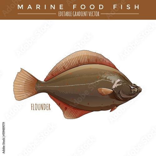 Flounder. Marine Food Fish Poster Mural XXL