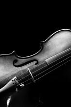 Violin & Beautiful Rim Light S...