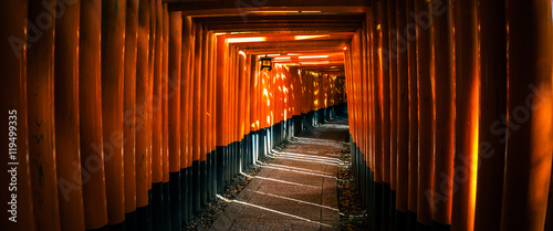 Wall Murals Place of worship Fushimi Inari Taisha Shrine in Kyoto