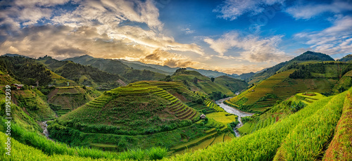 Poster Rijstvelden Green Rice fields on terraced in Mu cang chai, Vietnam Rice fiel