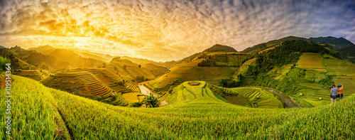 Foto op Aluminium Rijstvelden Green Rice fields on terraced in Mu cang chai, Vietnam Rice fiel