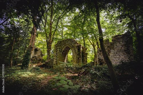 Foto op Canvas Weg in bos Stone ruins