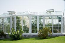 White Greenhouse In The Backyard