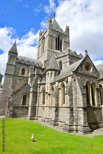 Christ Church Cathedral in Dublin, Ireland Poster