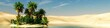Leinwandbild Motiv Panorama of the desert. Oasis and palm trees. banner.