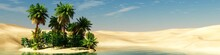 Panorama Of The Desert. Oasis ...