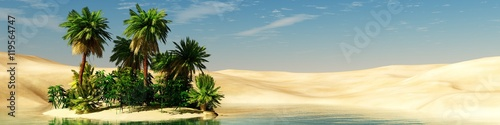Fototapeta Panorama of the desert. Oasis and palm trees. banner. obraz