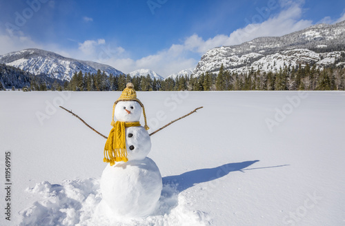 Cute fun snowman with knit hat and scarf in snowy winter landscape field with mo Poster