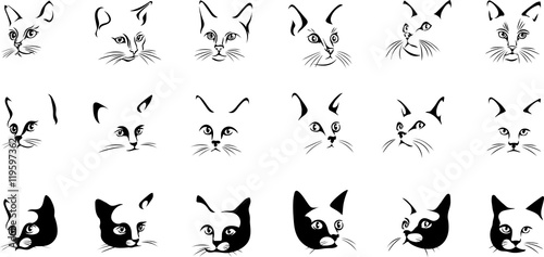 The Face Of A Black Cat Vector Image