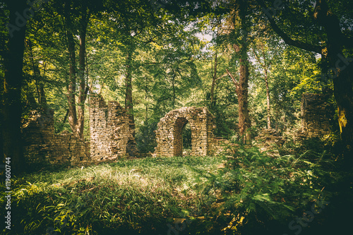 Foto op Plexiglas Rudnes Ruins in the forest