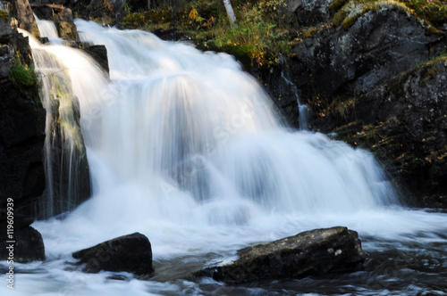 Fotografie, Obraz  waterfall in the forest