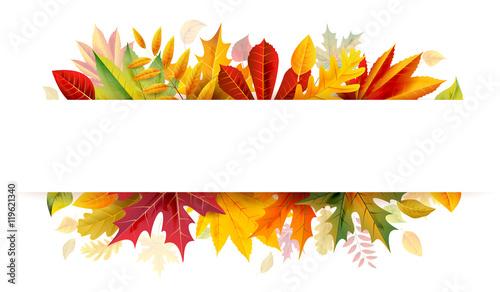 Fototapeta Autumn bunner obraz na płótnie