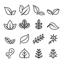 Leaf , Vegetarian, Herb Icon Set In Thin Line Style