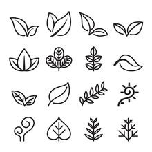 Leaf , Vegetarian, Herb Icon S...