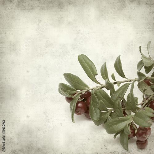 Fototapeta textured old paper background obraz na płótnie